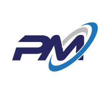 Logo PERFECT MERCH