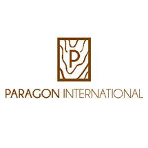 Paragon International Logo