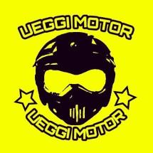 Logo Ueggi Motor