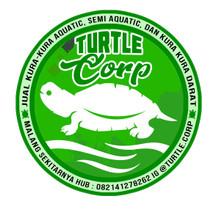 Logo Turtle Corp