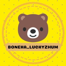 Logo luckyzhum toys