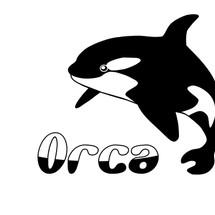 orca 789 Logo