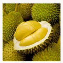 Logo durian olshop