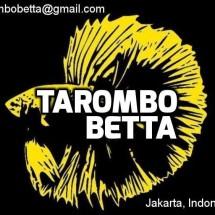 Tarombo Betta Logo