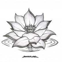 Logo NISAN FOTO