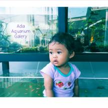 Logo Adia Aquarium Gallery