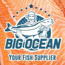 Logo Big Ocean
