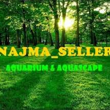 Logo Najma_sell