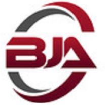 Logo Bangkit Jaya Abadi