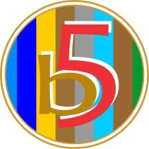 B Five Store Logo