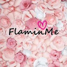 FlaminMe Logo