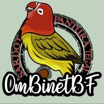 Binetgemstone Logo