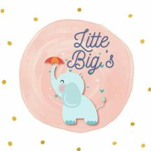 Logo little and bigs