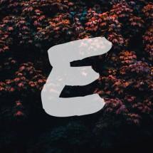 eugennestuffid Logo