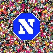 NICE CASE Logo