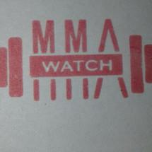 Logo mma pad venum