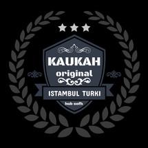 Logo HUB SOFH