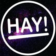logo_haybagsss