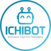 team.ichibot Logo