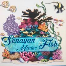 SENAYAN MARINE FISH Logo