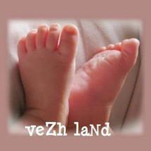 vezhland Logo