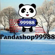 Logo pandashop99988