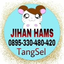 Logo jihan OS