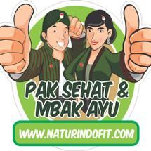 Naturindo Herbal Jogja Logo