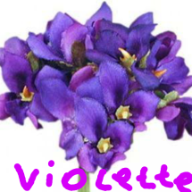 Logo violettee