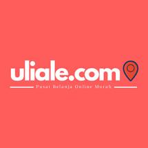 Logo UliAle