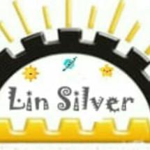 Logo Lin Silver