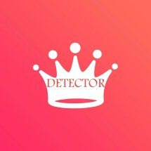 DETECTOR Logo