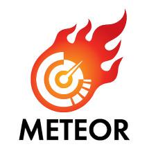 Logo METEORIZ77