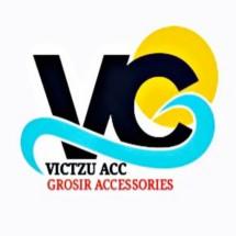 Logo victzu