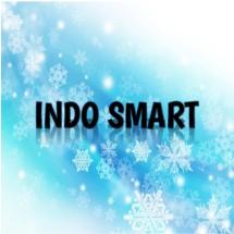 Logo Indo Smart Acc