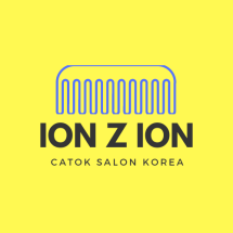 Logo ION Z ION