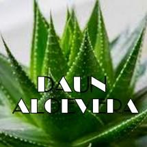 logo_daunaloeverashop