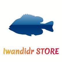 IwandidrSTORE Logo