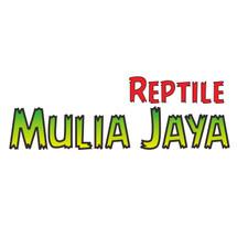 Logo Mulia Jaya Reptile