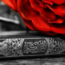 Logo Dunia Qur'an Store