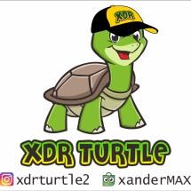 Logo XDR TURTLE