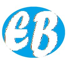 Electronics Bot Store Logo