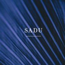 Logo Sadu Wear