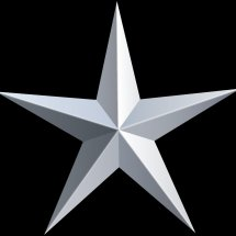Logo Platinum Star