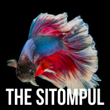 Logo The Sitompul