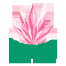 Logo Nature Concept