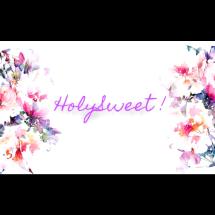 Logo HOLYSWEET!
