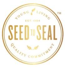 Logo Severins