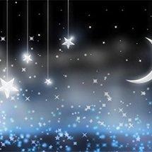 Logo Star Moon Light