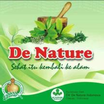 CV. De Nature Indonesia Logo